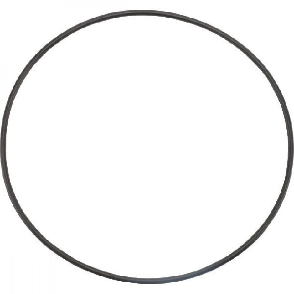 Banjo Behuizing O-ring - 12719A