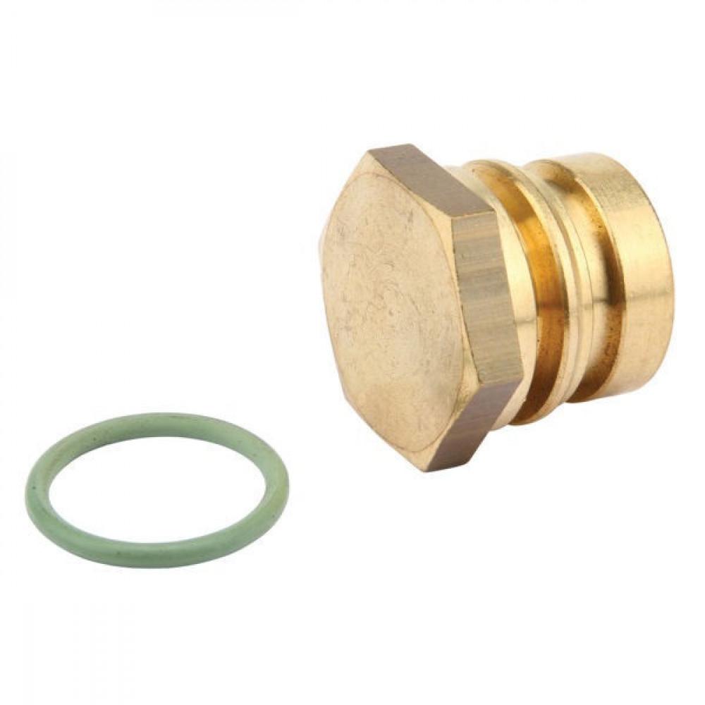 Arag Plug + o-ring - 3452010A00 | 3/4 Inch BSP