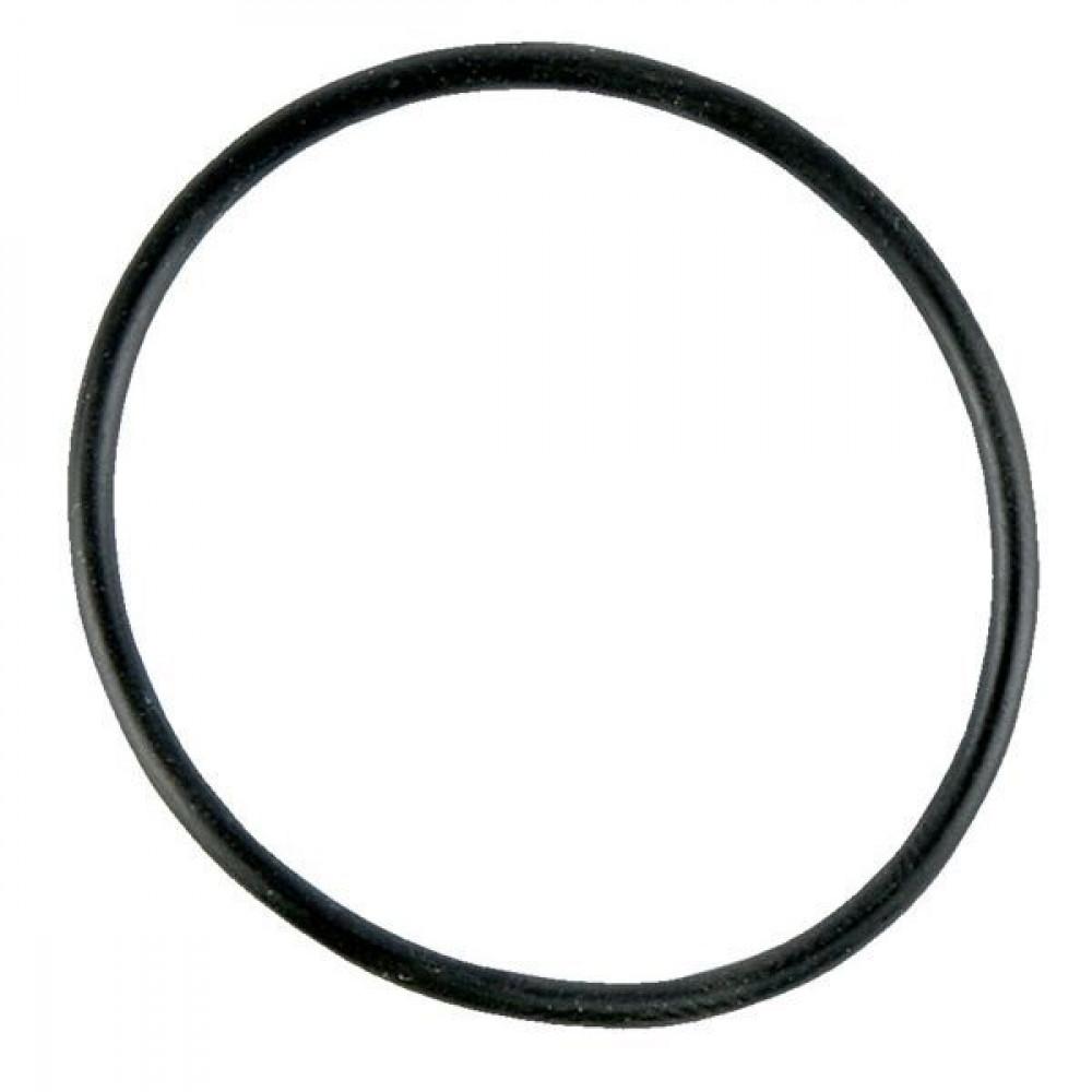 Brill O-ring - B08781