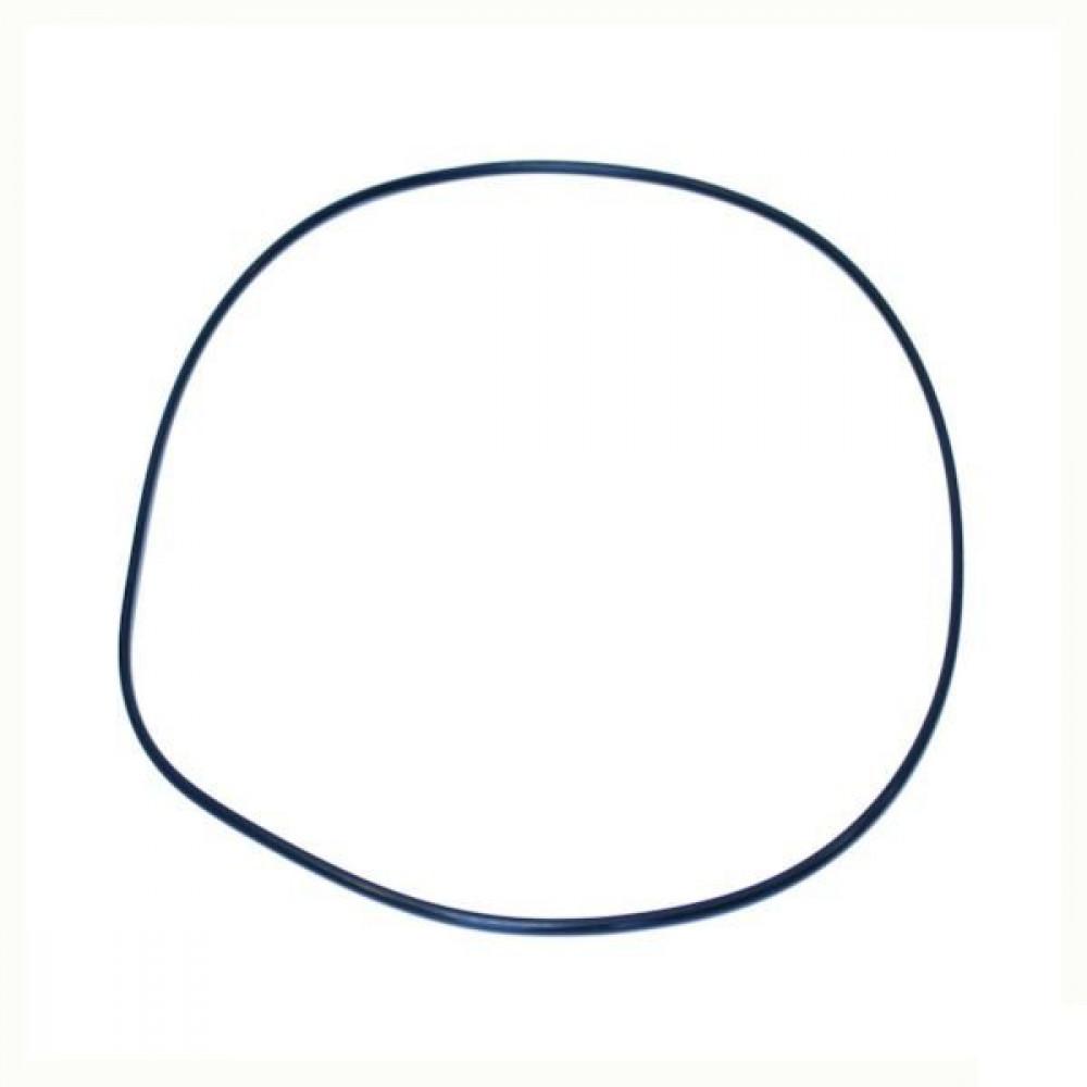 O-ring - NWS01897