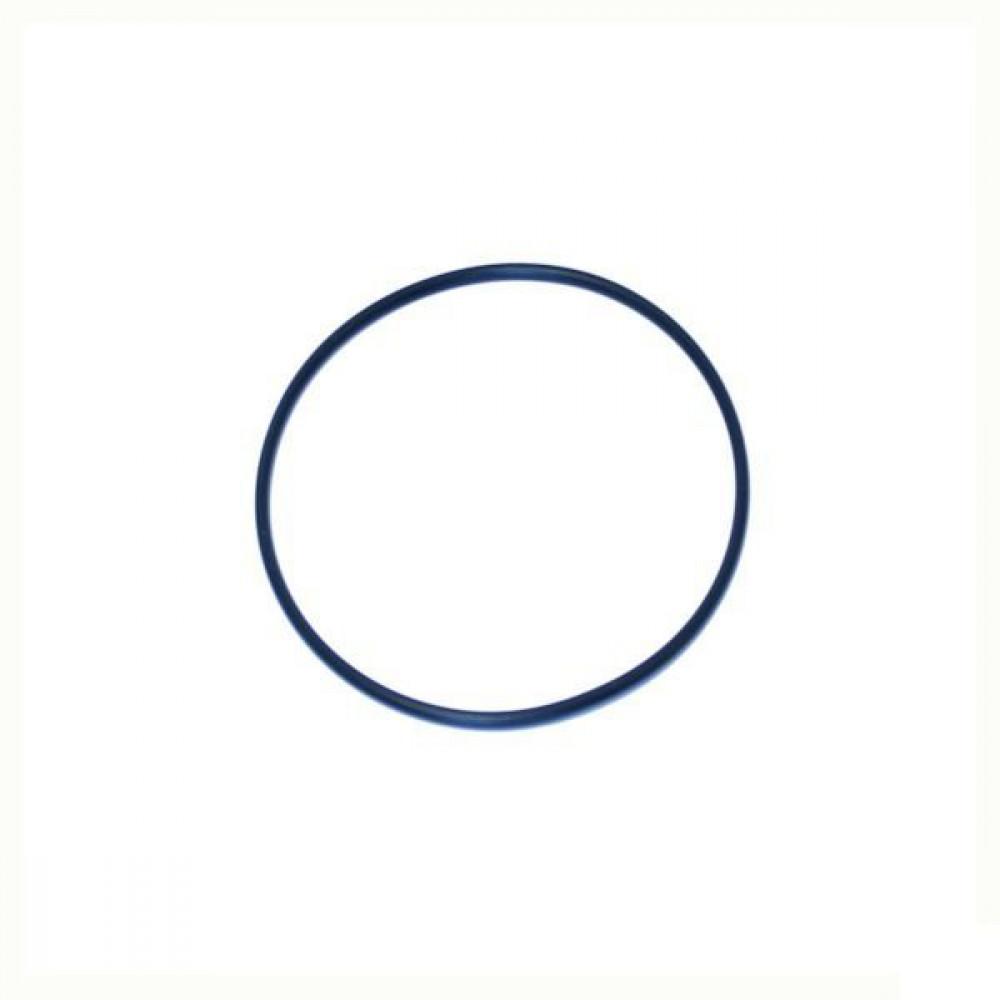 O-ring - NWS01933