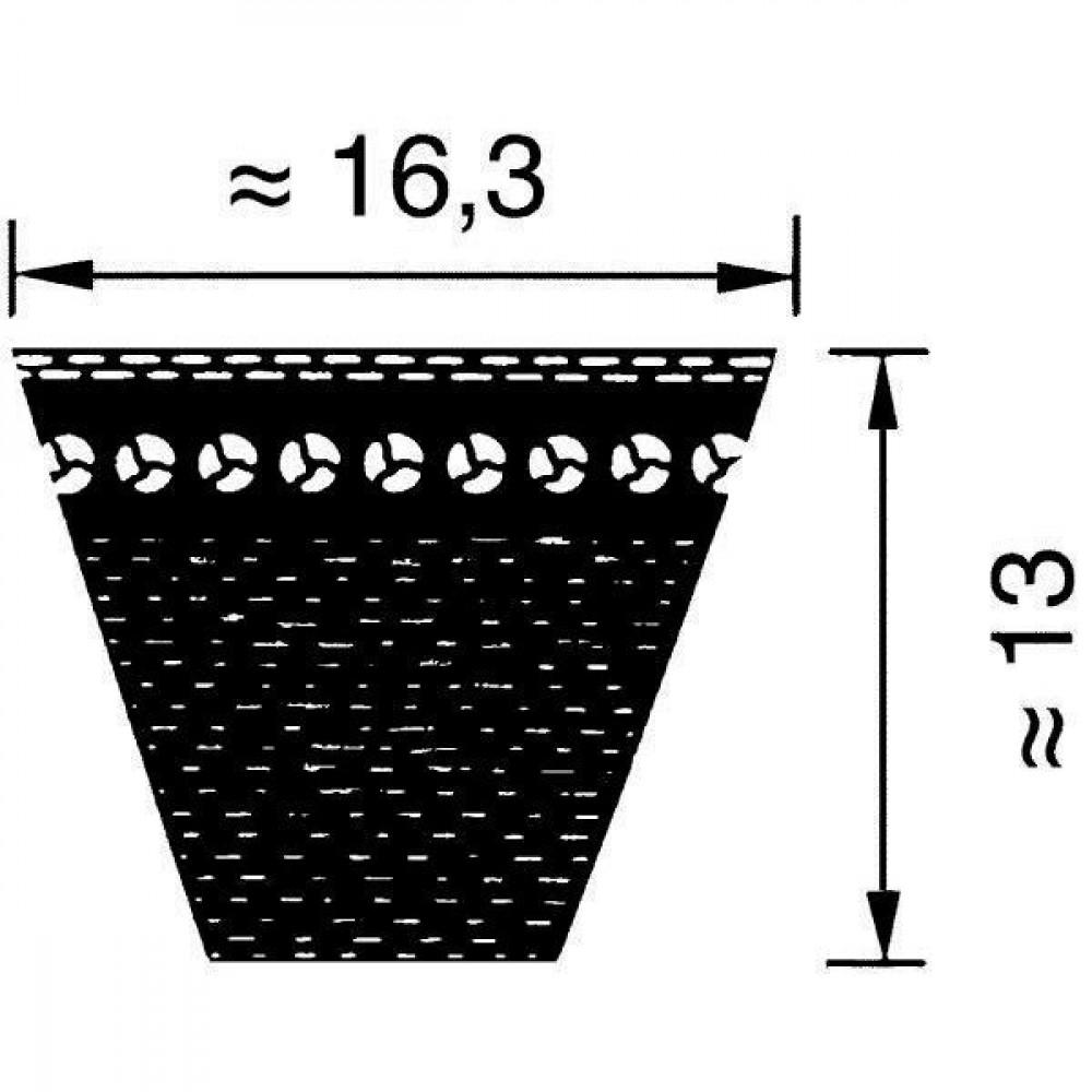 Optibelt V-snaar getand Lw M=S - XPB1590 | 112 mm | 1.530 mm | 1590 mm | 1.612 mm