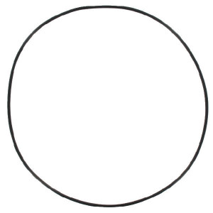 O-ring - 0002339520N