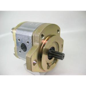 Bosch Rexroth AZPF-12-008-L - 0510425314 | 8 cm³/rev | 250 bar | 280 bar | 300 bar | 4000 Rpm | 700 Rpm | 4 Gats Duits
