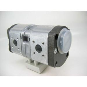 Bosch Rexroth AZPFF-10-008-008-R - 0510465008 | 8 / 8 cm³/rev | 250 / 250 bar | 280 / 280 bar | 300 / 300 bar | 4000 Rpm | 700 Rpm