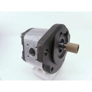 Bosch Rexroth AZPF-11-011-R - 0510525033 | 11 cm³/rev | 250 bar | 280 bar | 300 bar | 3500 Rpm | 600 Rpm | 4 Gats Duits