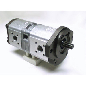 Bosch Rexroth AZPFF-11-019-016-R - 0510665085 | 19 / 16 cm³/rev | 210 / 250 bar | 230 / 280 bar | 250 / 300 bar | 3000 Rpm | 500 Rpm