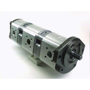 Bosch Rexroth AZPFFF-11-019-019-011-R - 0510665123 | 210 / 210 / 250 bar | 230 / 230 / 280 bar | 250 / 250 / 300 bar | 3000 Rpm | 600 Rpm