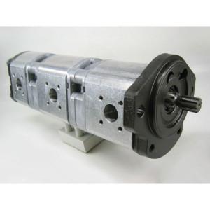 Bosch Rexroth AZPFFF-11-019-019-008-R - 0510665143   210 / 210 / 250 bar   230 / 230 / 280 bar   250 / 250 / 300 bar   3000 Rpm   700 Rpm