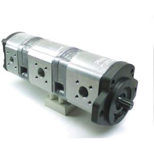Bosch Rexroth AZPFFF-11-019-019-005-L - 0510665403   210 / 210 / 250 bar   230 / 230 / 280 bar   250 / 250 / 300 bar   3000 Rpm   700 Rpm