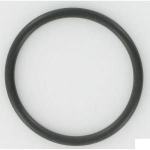 ZF O-ring - 0634303417