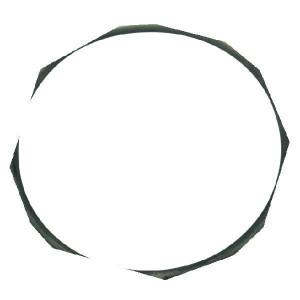 "Arag O-ring voor kogel 2"" - 318100040"