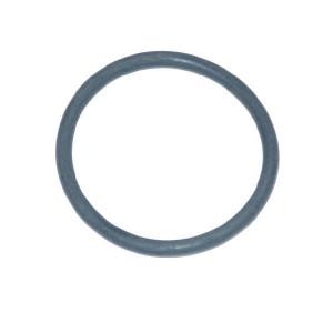 Polmac O-ring - 80001400