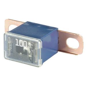 Hella Zekering 100A - 8JS740026561