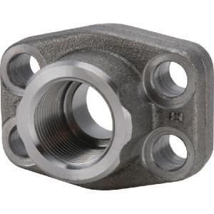 "Oleo Tecnica SAE-flens - AFS648G48 | Pompen Motoren | 414 bar | 3"" | 3"" GAS | 152,4 mm | 208 mm | 71,4 mm | 178 mm"