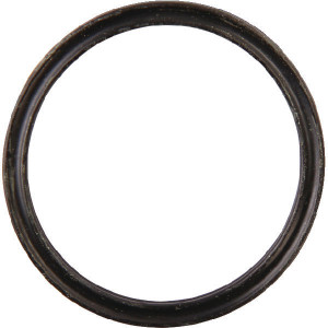Clemens O-ring 2824x262 - CW780025100