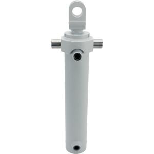 Cilinder D 35-70-300 tbv FT20 - D3570300FT2070 | 300 mm | 70 mm | 30 mm