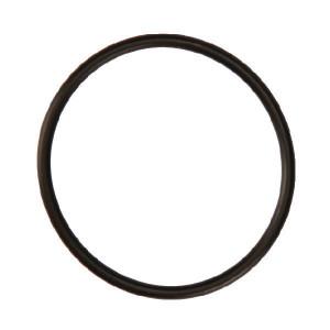 O-ring - DOR081