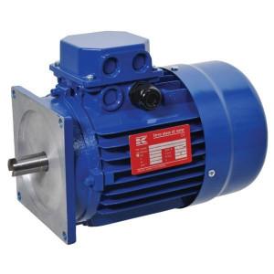 Elektromotor 0.55 kW - EM80A4MPP300 | 0,55 kW | 230/400V 50Hz V | M20x1,5 | 8,1 kg