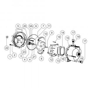 """Onderdelen passend voor Banjo centrifugaalpomp met benzinemotor 1 1/2"""" draad"""