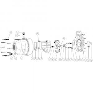 """Onderdelen passend voor Banjo centrifugaalpomp met benzinemotor 3"""" draad"""
