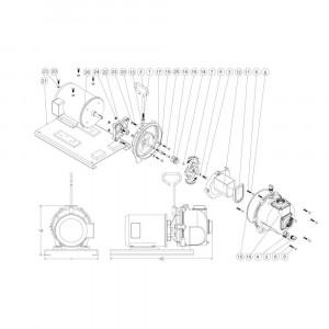 """Onderdelen passend voor Banjo centrifugaalpomp serie 222 gietijzer met elektromotor 2"""" draad"""