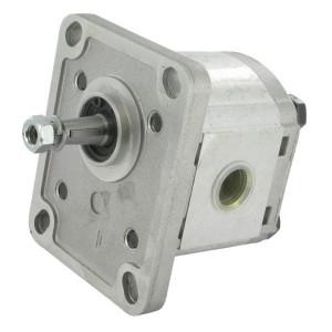 "Casappa Pomp PLP10.2.D0-81E1-LGC/GC-N- - PLP102D081E1G   4-gats flens, DIN   Conische as 1 : 8   2,13 cc/omw   260 bar p1   280 bar p2   290 bar p3   4000 Rpm omw./min.   650 Rpm omw./min.   69,4 mm   69,4 mm   33,2 mm   3/8"" Bsp mm   3/8"" Bsp mm"