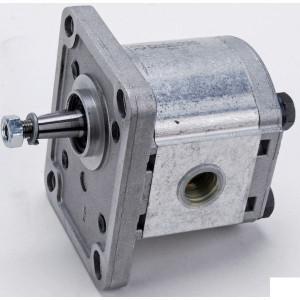 "Casappa Pomp PLP10.315 D0-81E1-LGC/GC- - PLP103D081E1G   4-gats flens, DIN   Conische as 1 : 8   3,34 cc/omw   260 bar p1   280 bar p2   290 bar p3   4000 Rpm omw./min.   650 Rpm omw./min.   3/8"" Bsp mm   3/8"" Bsp mm"