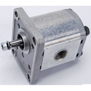 "Casappa Pomp PLP10.8 D0-81E1-LGD/GD-N- - PLP108D081E1G   4-gats flens, DIN   Conische as 1 : 8   8,51 cc/omw   180 bar p1   200 bar p2   210 bar p3   3500 Rpm omw./min.   650 Rpm omw./min.   88,5 mm   88,5 mm   42,8 mm   1/2"" Bsp mm   1/2"" Bsp mm"