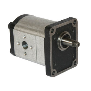 Casappa Pomp PLP20.11,2S3-82E2-LEA/EA-N-EL - PLP2011S382E2 | 4-gats flens, EN | Conische as 1 : 8 | 11,23 cc/omw | 250 bar p1 | 3500 Rpm omw./min. | 600 Rpm omw./min. | 128,1 mm | 128,1 mm | 74,1 mm | 30 mm | 30 mm