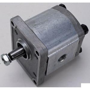 "Casappa Pomp PLP20.14 D0-82E2-LGE/GD-N - PLP2014D082E2G | 4-gats flens, EN | Conische as 1 : 8 | 14,53 cc/omw | 250 bar p1 | 280 bar p2 | 300 bar p3 | 3500 Rpm omw./min. | 500 Rpm omw./min. | 107,5 mm | 107,5 mm | 3/4"" Gas mm | 1/2"" Gas mm"