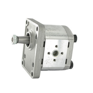 Casappa Pomp PLP20.4D0-82E2-LEA/EA-N-EL FS - PLP204D082E2 | 4-gats flens, EN | Conische as 1 : 8 | 4,95 cc/omw | 250 bar p1 | 280 bar p2 | 300 bar p3 | 4000 Rpm omw./min. | 600 Rpm omw./min. | 43,75 mm | 30 mm | 30 mm