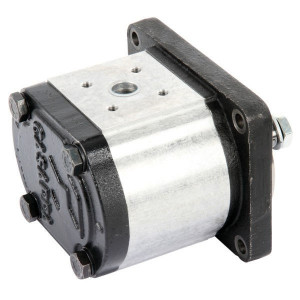Casappa Pomp PLP30.22D0-56B3-LBM/BL-N- - PLP3022D056B3 | 21,99 cc/omw | 250 bar p1 | 270 bar p2 | 280 bar p3 | 3000 Rpm omw./min. | 350 Rpm omw./min. | 134 mm | 134 mm | 55 mm | 55 mm