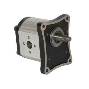 Casappa Pomp PLP30.61D0-84E4-LEF/ED-N - PLP3061D084E4 | 4-gats flens, EN | Conische as 1 : 8 | 60,97 cc/omw | 190 bar p1 | 210 bar p2 | 220 bar p3 | 2500 Rpm omw./min. | 350 Rpm omw./min. | 156 mm | 156 mm | 76,5 mm | 62 mm | 51 mm