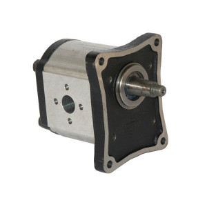Casappa Pomp PLP30.61S0-84E4-LEF/ED-N - PLP3061S084E4 | 4-gats flens, EN | Conische as 1 : 8 | 60,97 cc/omw | 190 bar p1 | 210 bar p2 | 220 bar p3 | 2500 Rpm omw./min. | 350 Rpm omw./min. | 156 mm | 156 mm | 76,5 mm | 62 mm | 51 mm