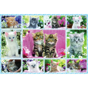 Schmidt Puzzel kittens - SH56135 | 36,1 x 24,3 cm